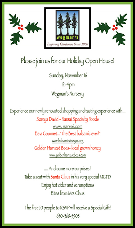 holiday openhouse home