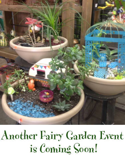 may15 event fairy